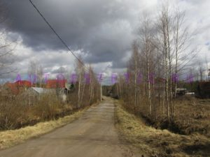 Стихи о Рахье - цикл стихов Калерии Соколовой